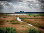 Minsmere Bird Reserve and Sizewell B Nuclear Power Station, Suffolk, UK