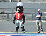 Rebel the Bear mascot at Vaught-Hemingway Stadium in Oxford, Miss. on Saturday, September 24, 2011. Georgia won 27-13.