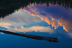A floating log in an alpine lake and the trees on shore frame the reflection of colorful clouds just after sunset