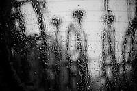 Scheldeprijs 2012..rain