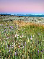 Martis Valley Sunrise II