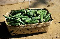 FRUITS - VEGETABLES<br /> Basket of Okra<br /> Alabama