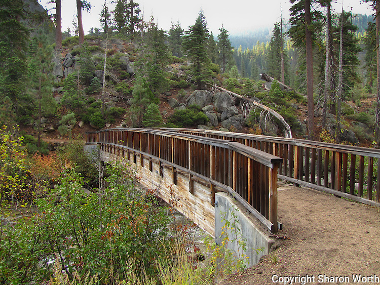 A bridge crosses a stream near the beginning of the Columns of the Giants Interpretive Walk along the Sonora Pass Highway.