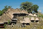 Traditional homes, Bena Village, Bajawa, Flores