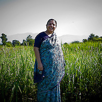 Dr. Vandana Shiva poses with her fields of 'millet and 560 strains of rice' in Navdanya in Dehradun, Uttarakhand, India, on 6th September 2009...Dr. Vandana Shiva, the founder of Navdanya Foundation and Bijavidyapeeth, is a physicist turned environmentalist who campaigns against genetically modified food and teaches farmers to rely on indigenous farming methods.. .Photo by Suzanne Lee