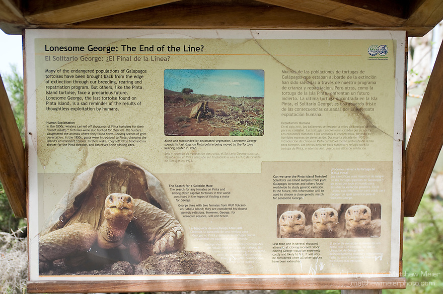 Charles Darwin Research Station, Puerto Ayora, Santa Cruz Island, Galapagos, Ecuador; a sign explaining the fate of Lonesome George, the last known Galapagos Giant Tortoise (Geochelone elephantopus) from Pinta Island, Lonesome George lives at the Charles Darwin Research Station with 2 females from the Wolf Volcano on Isabella island, considered his closest genetic relations, however, for some reason, George will not breed , Copyright © Matthew Meier, matthewmeierphoto.com All Rights Reserved