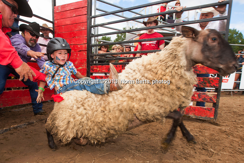 RAM Rodeo Tour in Tweed, Ontario, Canada<br /> Aug. 3&amp;4, 2013<br /> Norm Betts, photographer<br /> 416 460 8743<br /> normbetts@canadianphotographer.com<br /> &copy;2013, normbetts, photographer