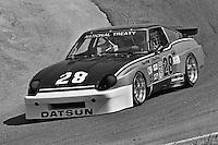 Sam Posey drives a Datsun 280ZX Turbo during a Camel GT IMSA race at Laguna Seca near Monterey, California, on May 3, 1981. (Photo by Bob Harmeyer)