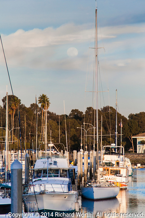 One day away from full, the moon is glimpsed through clouds as it rises over sailboats in the San Leandro Marina.