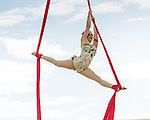 2014-08-17 - Garlic Festival #wightlive events