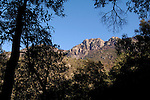 Cliffside framed by silhouettes of oaks, Madera Canyon, Mount Wrightson Wilderness, Coronado National Forest, Arizona