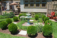 English formal style garden scene with house, double bird bath water fountain, Buxus boxwood trimmed into globes, Leucanthemum Shasta Daisies, Vinca, lawn grass, on sunny summer day, trees, beautiful backyard landscaping, garden chairs with trellis arbor, entertainment patio with bbq grill and table and chairs and umbrella, back door, windows