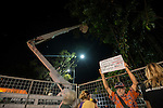Cairns City Council's plan to disperse roosting spectacled flying foxes was to prune and trim the trees beside the Cairns City Library by   7pm first on 28th of April 2014.