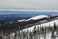 Utsikt fra Mount Hamar mot Norman Wells og Mackenzie River. ---- Mackenzie River seen from Mount Hamar.