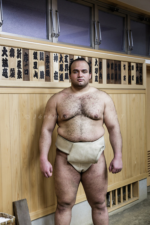 Tokyo, February 5 2015 - Portrait of Egyptian sumo wrestler Abdelrahman Shalan, alias Ōsunaarashi Kintaro, at Otake stable in the Taito district. Osunaarashi is the first pro sumo wrestler from the African continent. he was promoted to the top sumo division in November 2013 and emerged victorious from his first two matches against yokozuna ranked wrestlers in July 2014.