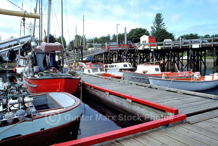 Queen charlotte islands charlottes haida gwaii bc pictures for British columbia fishing license