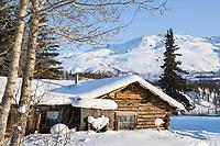Historic Henry Pingel cabin in Wiseman, Alaska