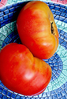 Tomato Big Rainbow similar to German Johnson tomatoes beefsteak heirlooms fresh picked vegetables on blue and green plate