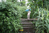A man walks through the Xixi wetlands which lie in the west of the city of Hangzhou. This is China's 'first national wetland park,' dubbed as such to act as a role model to all other wetlands in China and to supposedly show how to effectively manage and restore wetlands, notably urban wetlands. Zhejiang Province. China. 2010