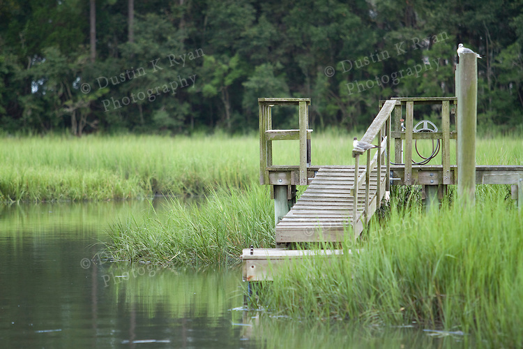 Lowcountry Tidal Creek Marsh and Wooden dock