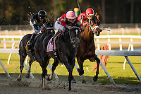 OLDSMAR, FLORIDA - FEBRUARY 11: McCracken #8, ridden by Brian Joseph Hernandez (pink hat), overtaking State of Honor #1, ridden by Julien Leparoux (red hat), down the final stretch to win the Sam F. Davis Stakes at Tampa Bay Downs on February 11, 2017 in Oldsmar, Florida (photo by Douglas DeFelice/Eclipse Sportswire/Getty Images)