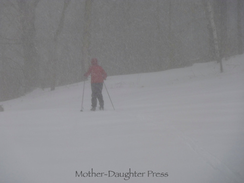Woman skis into blizzard in field, New England, Maine, USA