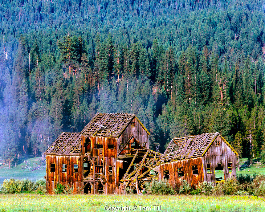 Nibley lumber mill remains in fog, Whitney ghost town, Wallowa-Whitman National Forest, Oregon, gold mining town on Sumpter Valley Rail, morning