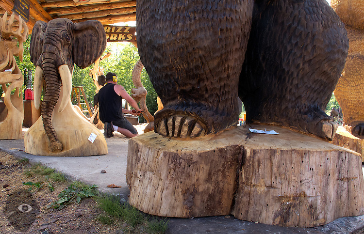 Chainsaw carving artist left eye images
