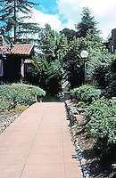 Berkeley CA:  Rose Walk, 1913. Viewed from Euclid. Planned by Maybeck.  Photo '78.