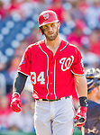 23 August 2015: Washington Nationals outfielder Bryce Harper walks back to the dugout after striking out against the Milwaukee Brewers at Nationals Park in Washington, DC. The Nationals defeated the Brewers 9-5 in the third game of their 3-game weekend series. Mandatory Credit: Ed Wolfstein Photo *** RAW (NEF) Image File Available ***