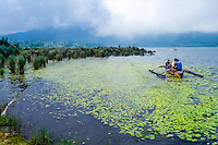 Bali, Tabanan, Bedugul. Fishing on the Bratan lake.