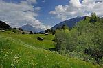 Alpine peaks, forests and meadows.  Imst district, Tyrol, Tirol, Austria.