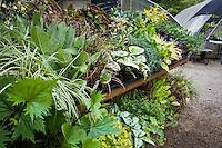 Display table tapestry of leaf foliage, Digging Dog Nursery