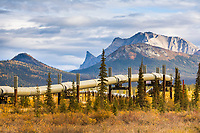 Trans Alaska Oil Pipeline, Brooks Range, Alaska.