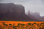 A spring rain shower moves through Monument Valley, Arizona.
