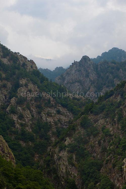 The Gorges du Cady, near Vernet-les-Bains, France.