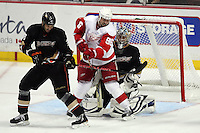 03/02/11 Anaheim, CA: Anaheim Ducks defenseman Andreas Lilja #3, goalie Dan Ellis #38 and Detroit Red Wings left wing Tomas Holmstrom #96 during an NHL game between the Detroit Red Wings and the Anaheim Ducks at the Honda Center. The Ducks defeated the Red Wings 2-1 in OT.
