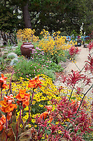 Colorful California garden with orange and yellow flower perennials, Canna, Anigozanthos, Rudbeckia; Schneck Garden