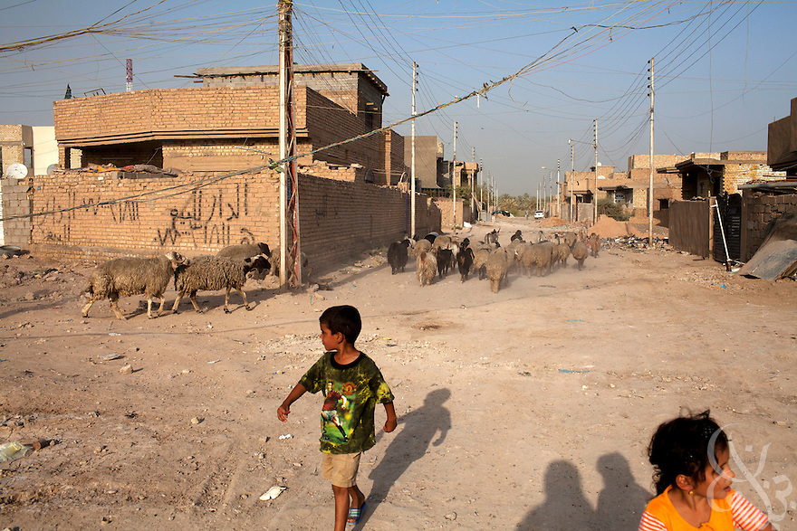 Iraqi children play underneath a tangle of home-rigged electrical wires on a Baghdad street August 23, 2010.  After seven years of conflict, Iraqis still rely heavily on the use of neighborhood or private generators as the iraqi civil electrical grid has struggled to keep pace with demand despite numerous projects to rebuild Iraq's infrastructure and electrical capacity.  .