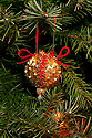 WA07273-00...WASHINGTON - Christmas tree.