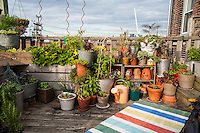 A small inventive urban rooftop container garden.