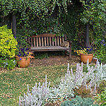 garden bench and arbour
