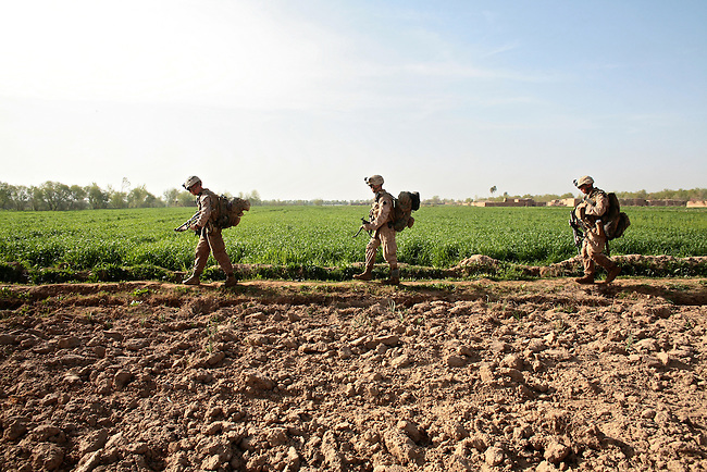 U.S. Marines from Company L, 3rd Battalion, 6th Marine Regiment walk through a field during a three-day mission in Marjah, Afghanistan. March 10, 2010. DREW BROWN/STARS AND STRIPES