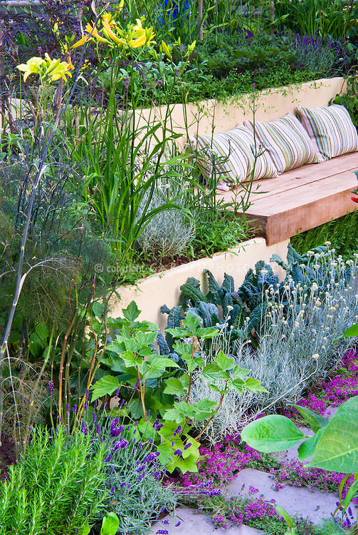 Landscaping With Vegetables : Stepping stone thymes in patio with garden benches herbs