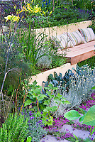 Edible landscaping: Thyme herbs in flower Thymus, kale vegetables, in crevices and nooks and crannies of path stepping stones walkway with herbs and lettuce vegetables: rosemary Rosmarinus, Salvia officinalis, Lavandula lavender, dill, kale, patio, Garden benches with pillow cushions 40197