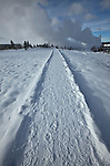 Snow-covered boardwalk of the Fountain Paint Pot Nature Trail during winter in Yellowstone National Park, Wyoming, USA