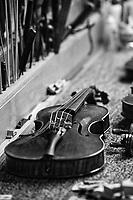 Fine Stringed Musical Instruments