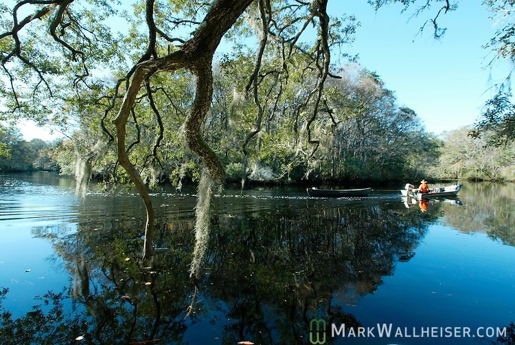 A man tows a small boat down the Crooked River that borders Tate's Hell Swamp in Franklin County, Florida southwest of Tallahassee.   (Mark Wallheiser/TallahasseeStock.com)