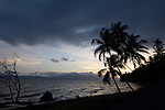 Alotau, Milne Bay, Papua New Guinea; twilight and palm trees, viewed from the shuttle bus, while traveling between the airport and the boat to Tawali Resort , Copyright © Matthew Meier, matthewmeierphoto.com