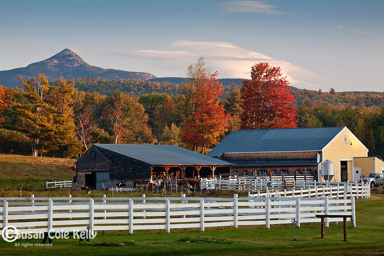Fall foliage at the Remick Country Doctor Museum in Tamworth, White Mountains, NH, USA